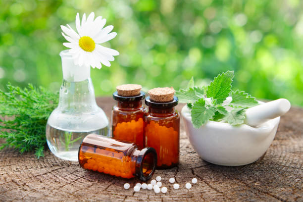 Bottles of homeopathic globules, mortar with mint leaves, daisy flower in flask and juniper bunch. Homeopathy medicine concept. stock photo