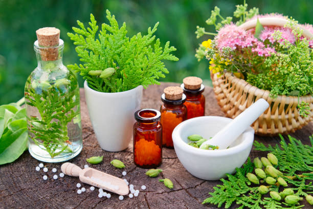 bottles of homeopathic globules. thuja, plantain, healthy infusion, mortar and basket of herbs. homeopathy medicine. - białoruś zdjęcia i obrazy z banku zdjęć