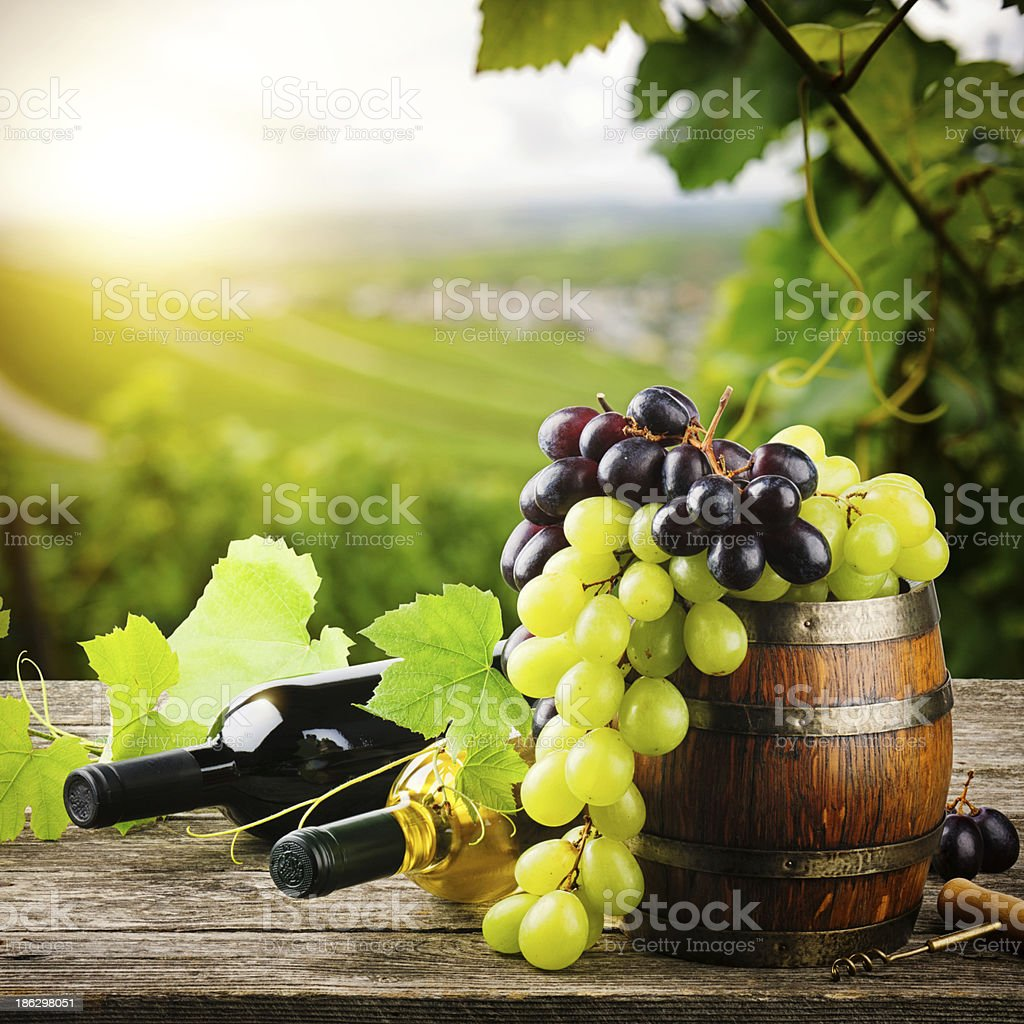 Bottles of red and white wine with fresh grape stock photo