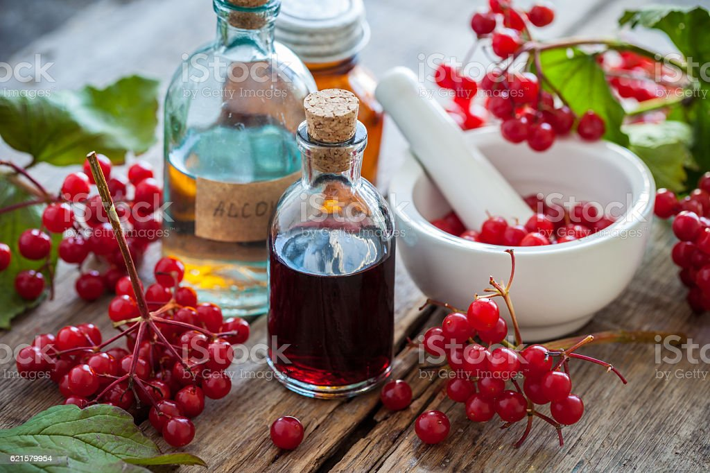 Bottles of Red Viburnum tincture and mortar of healthy berries stock photo