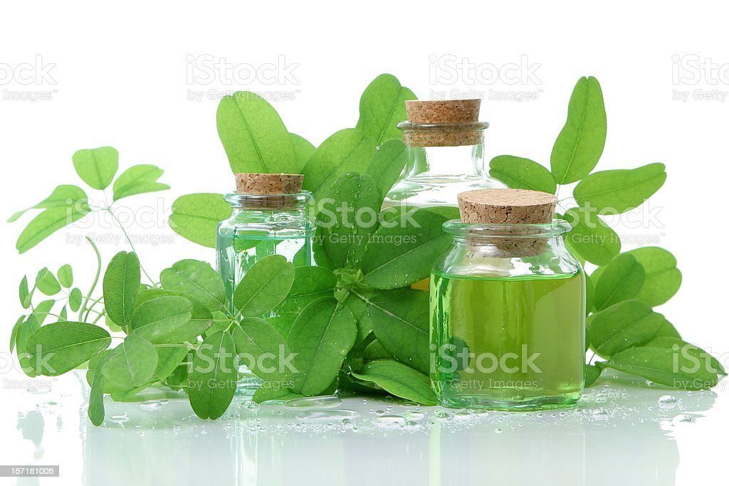 Bottles with cork composition and green leaves royalty-free stock photo
