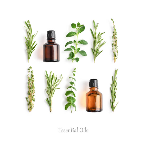 Bottles with essential oils and fresh herbs Bottles with essential oils and fresh herbs: rosemary, oregano, thyme and peppermint isolated on white background. aromatherapy stock pictures, royalty-free photos & images