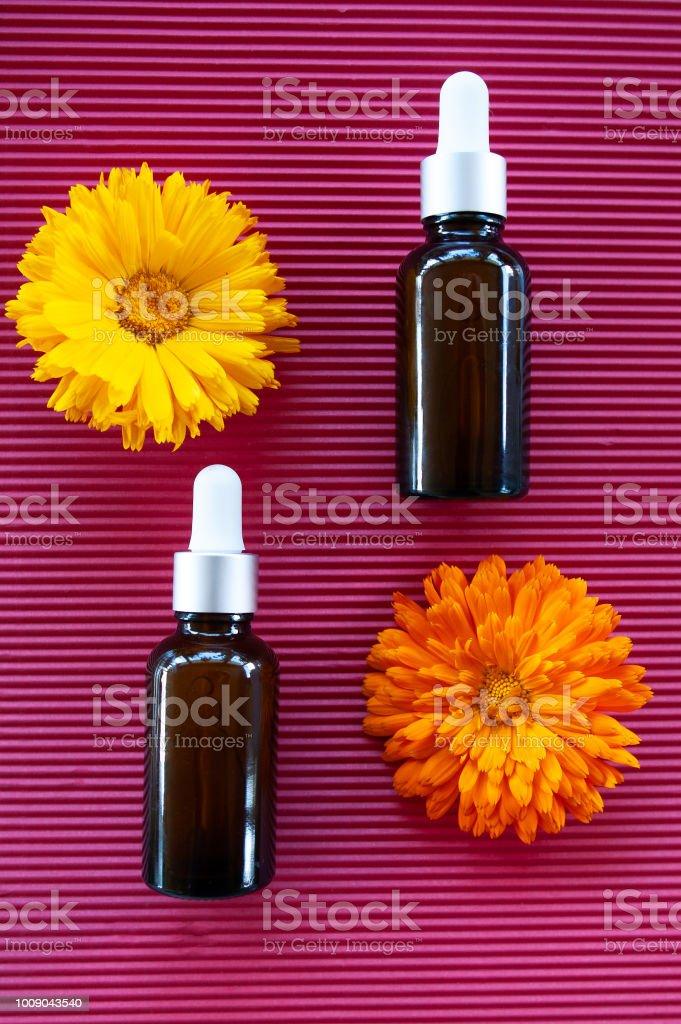 Garrafas com óleo de calêndula flor em backgraund vermelho, conceito de cosméticos de natureza orgânica, geométrica, plana leigos, bio, - foto de acervo