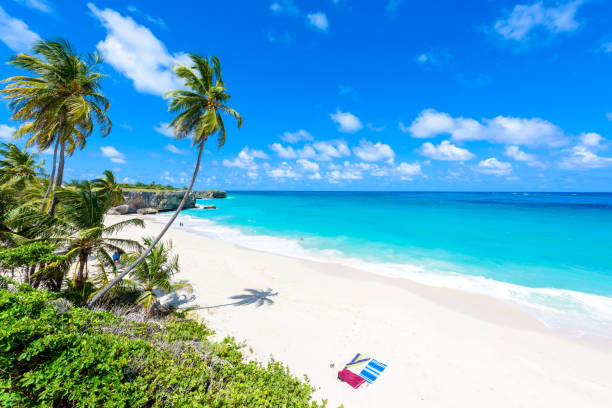 Explore The Beauty Of Caribbean: Royalty Free Barbados Pictures, Images And Stock Photos