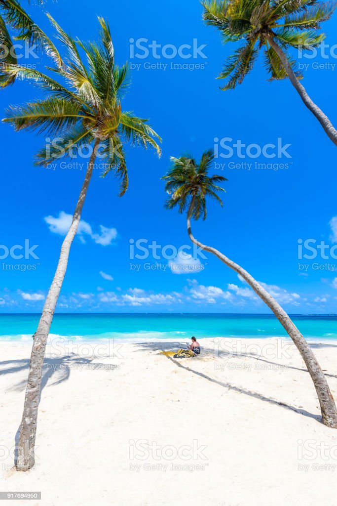 Bottom Bay, Barbados - Paradise beach on the Caribbean island of Barbados. Tropical coast with palms hanging over turquoise sea. Panoramic photo of beautiful landscape. stock photo