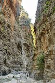 Fast mountain stream in Maligne Canyon, Maligne River, Canadian Rockies, Jasper National Park, Alberta, Canada