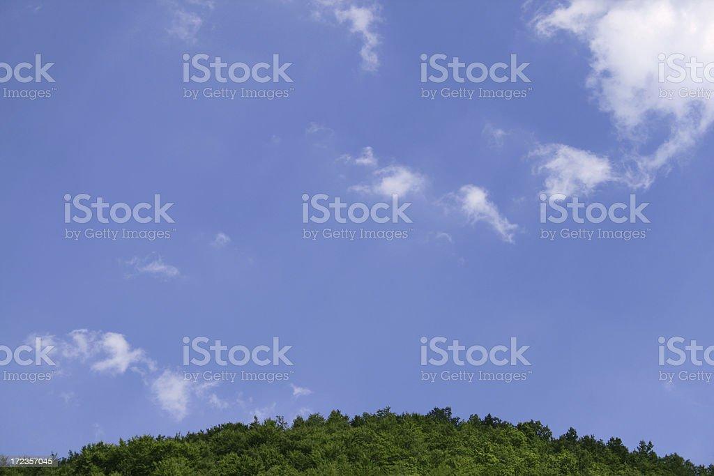 Bottom top royalty-free stock photo