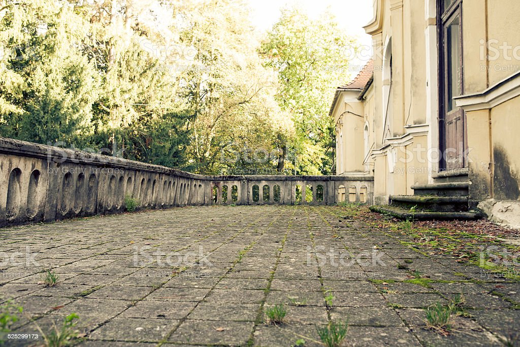 Bottom view of an overgrown terraces stock photo