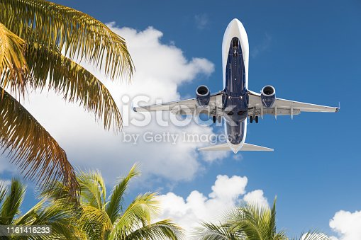 Bottom View of Passenger Airplane Flying Over Tropical Palm Trees.