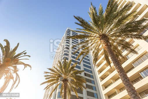 Bottom view on palms and modern buildings in Los Angeles with copy space