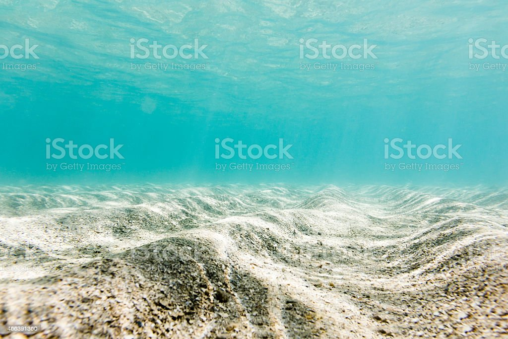 Botton of the Sea in Clear Natural Pool stock photo