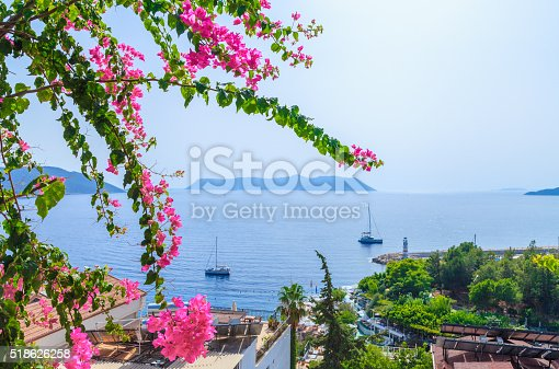 Pink bougainvillea flower at summer over natural sea, sun and sky background at Kas, Antalya, Turkey