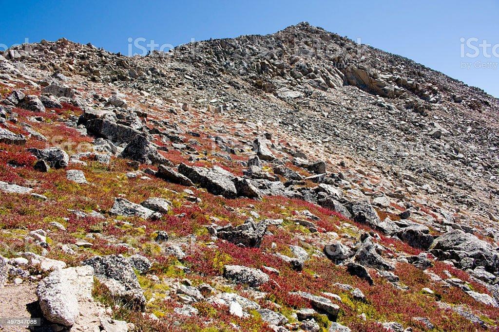 Boulder Field on Mount Yale Colorado stock photo