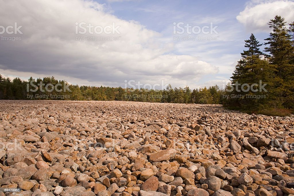 Boulder field surrounding by pine trees stock photo