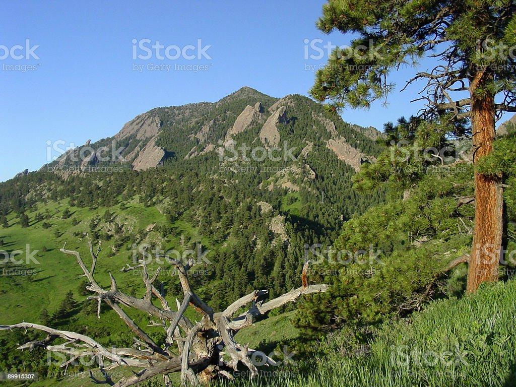 Boulder, Colorado, como telón de fondo. foto de stock libre de derechos