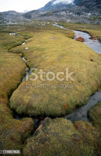Boulders covered with moss (iceland)More images of same photographer in lightbox: