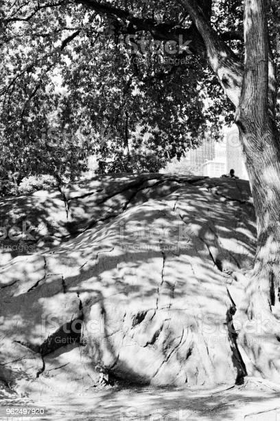 Foto de Pedregulhos No Central Park e mais fotos de stock de Ajardinado