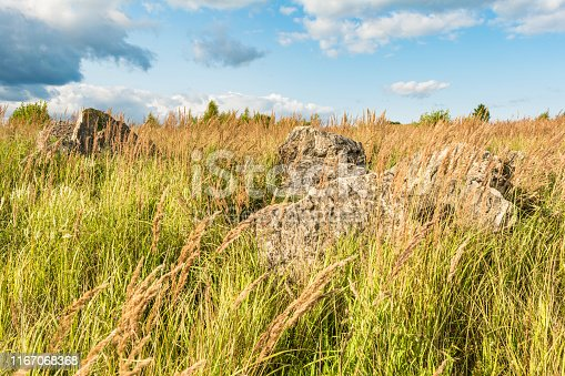 boulders in the dry grass, a valley with dry grass and large stones, sunny summer day, blue sky with clouds