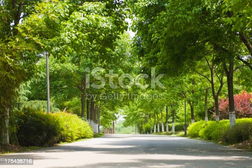 boulevard  in a park