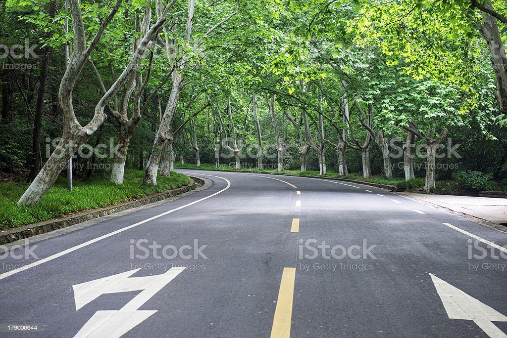Boulevard royalty-free stock photo