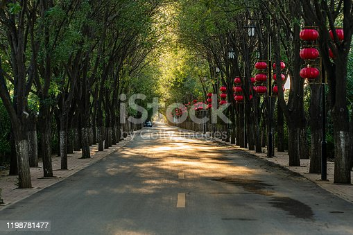 istock Boulevard,Footpath through the park in spring 1198781477
