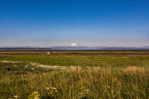 Boundary Bay wetlands with Mount Baker in the distance. Boundary Bay is an important stop for birds migrating along the Pacific Flyway, particularly for western sandpiper and dunlin, and has been designated a Hemisphere Reserve by the Western Hemisphere Shorebird Reserve Network and a Canadian Important Bird Area. The mudflats, extensive eel grass beds and salt marshes support a rich population of marine invertebrates which are an important source of energy for migrating shorebirds. During migration times the bird count in the bay may exceed 100,000