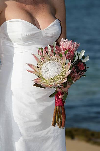bunten bouquet - protea strauß stock-fotos und bilder