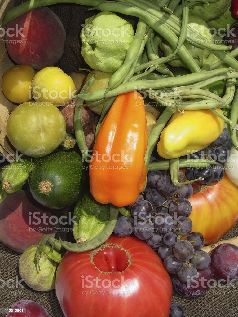 Bounty of Vegetables royalty-free stock photo