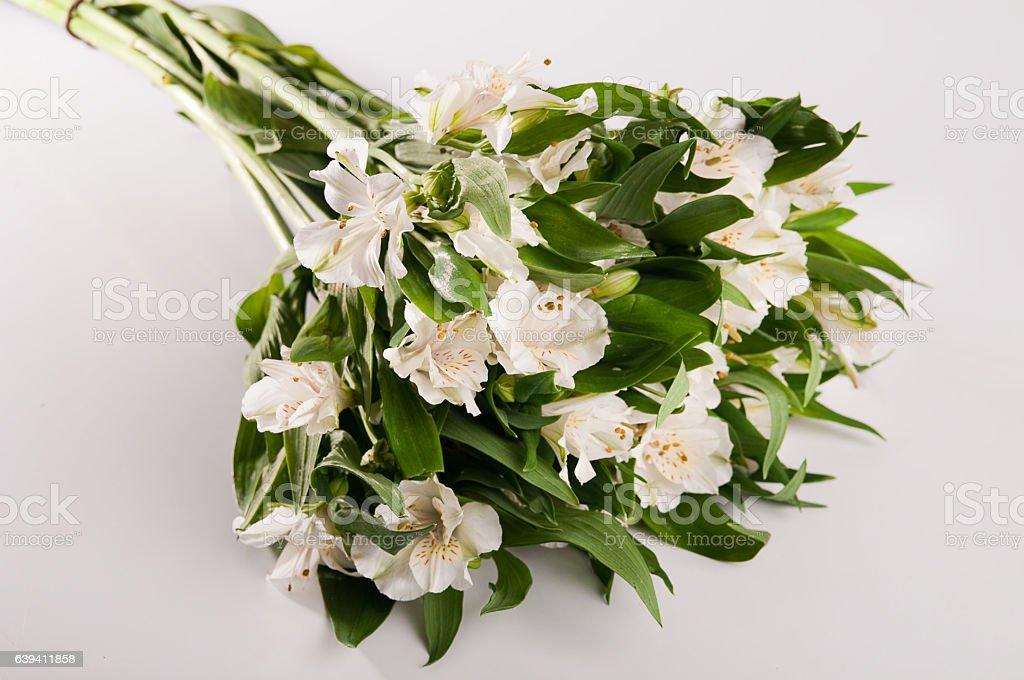 Bouquet alstroemeria – zdjęcie