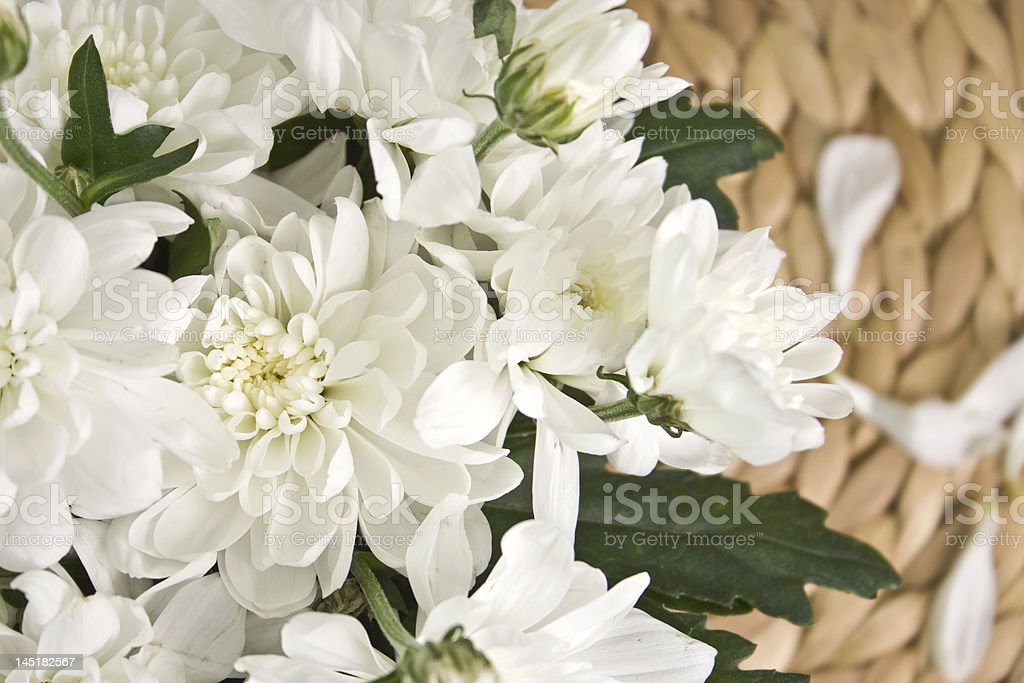 bouquet  chrysanthemum flower on the mat stock photo