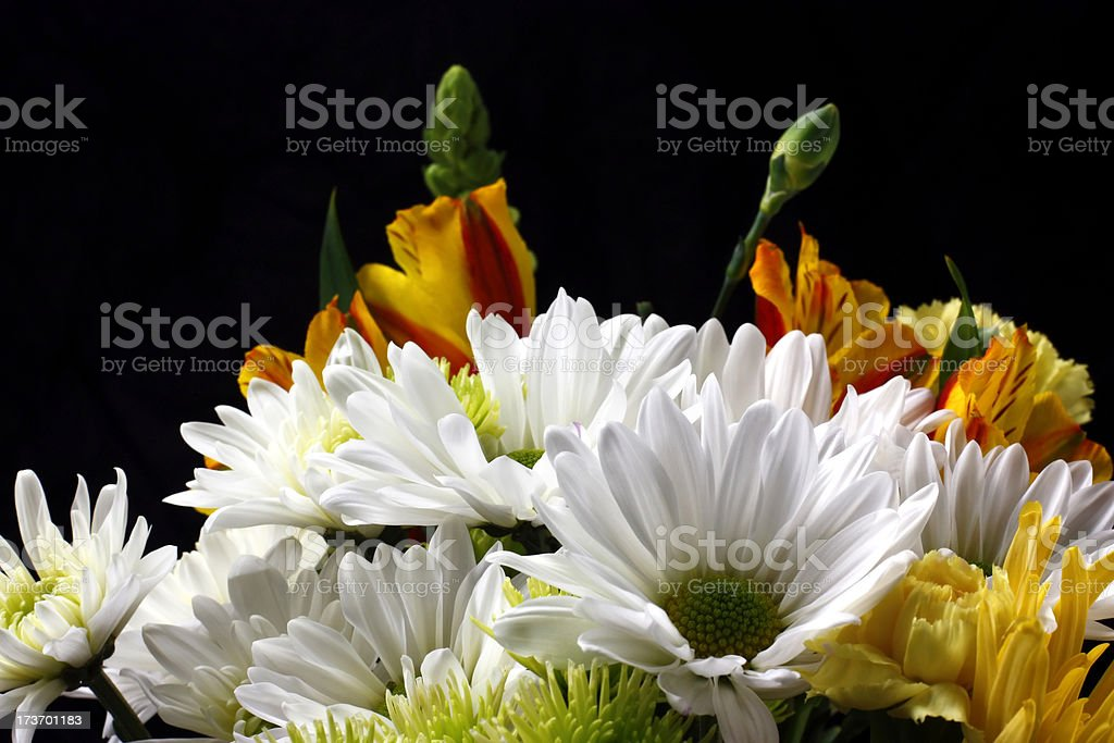 Bouquet detail on black background stock photo