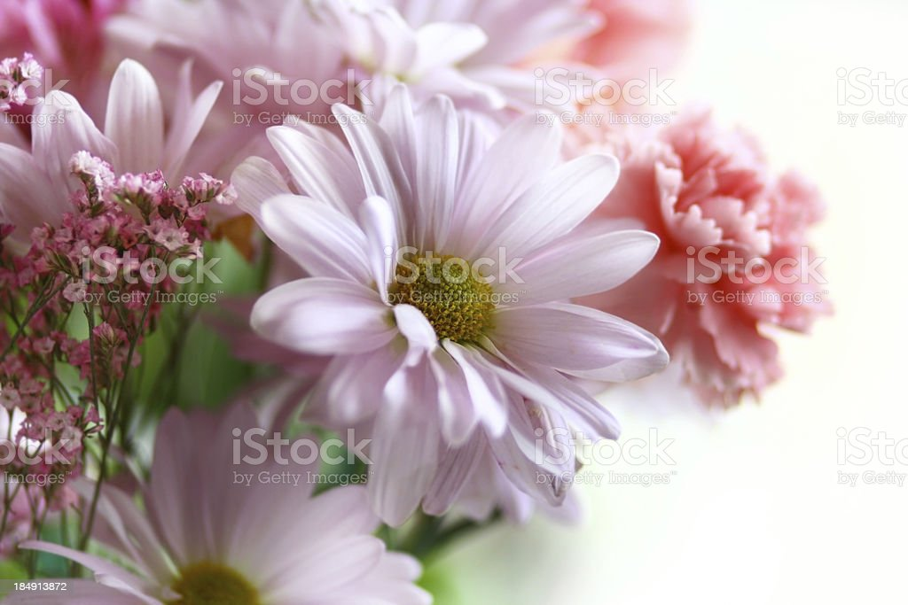 Bouquet flowers royalty-free stock photo