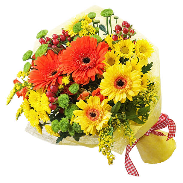 Bouquet from gerbera flowers isolated on white background picture id466737511?b=1&k=6&m=466737511&s=612x612&w=0&h=3v w8sbprw eqcwsvgn6kl3ccw49nhrb j4uuuidpfu=
