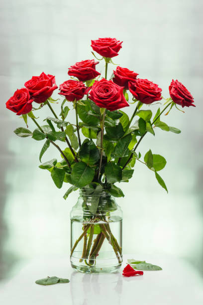 Cтоковое фото Bouquet from scarlet magnificent roses in bank with water on a light surface