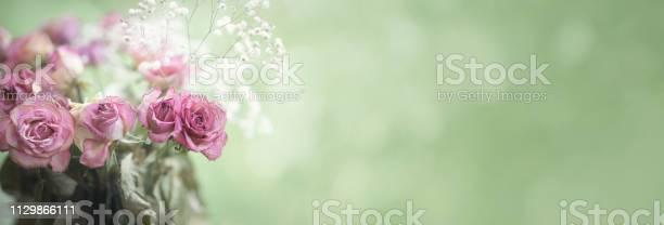 Bouquet of aged red rose border or banner with copy space picture id1129866111?b=1&k=6&m=1129866111&s=612x612&h=uyvtsgogr fjx1imctflsd7s9wqonus3r1xkmtnvg7m=