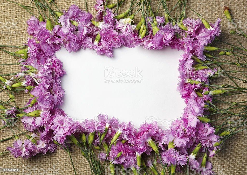 아름다운 부케와 carnations. royalty-free 스톡 사진