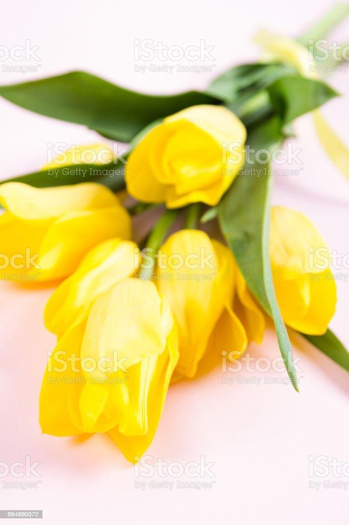 Bouquet von schönen frischen gelben Tulpen auf rosa Hintergrund Lizenzfreies stock-foto