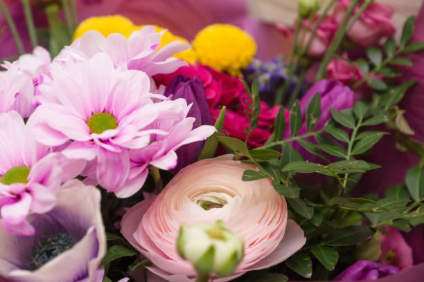 Bouquet of beautiful garden flowers – zdjęcie