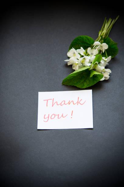 一束美麗的花園白色紫羅蘭上的黑色圖像檔