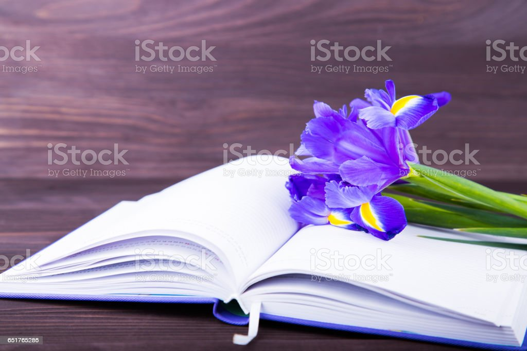 Bouquet of beautiful irises with notebook on dark wooden background stock photo