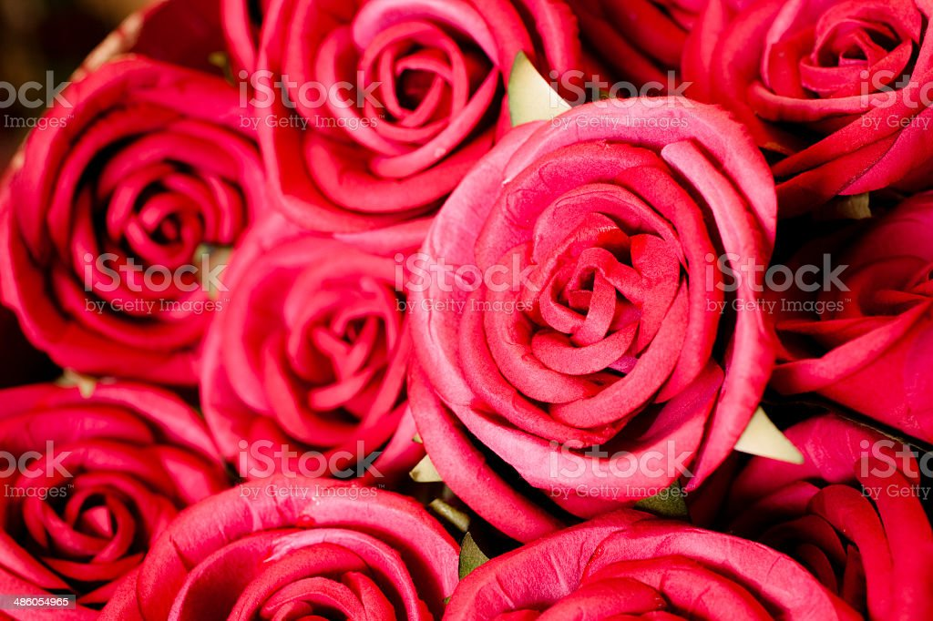 Bouquet of beautiful pink roses. royalty-free stock photo