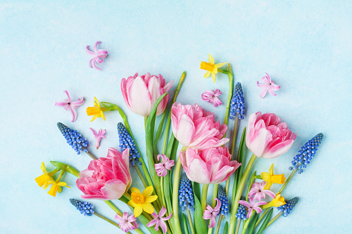 Bouquet of beautiful spring flowers on pastel blue table top view. Greeting card for International Women Day.