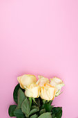 istock Bouquet of beige roses on pink background, flat lay, top view, copy space. Mothers day. Valentines day 674487214