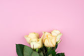 istock Bouquet of beige roses on pink background, flat lay, top view, copy space. Mothers day. Valentines day 674487306