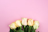 istock Bouquet of beige roses on pink background, flat lay, top view, copy space. Mothers day. Valentines day 674487402