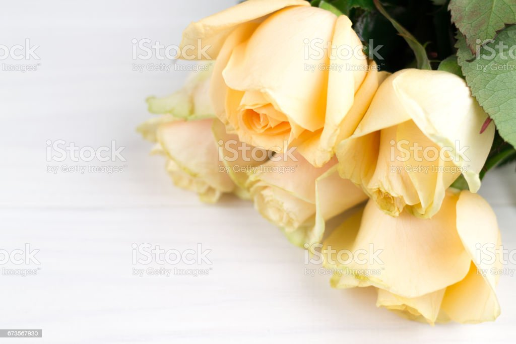 Bouquet of beige roses on white wooden vintage background, flat lay, top view, copy space. Mothers day. Valentines day royalty-free stock photo