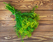 Bouquet of blooming herbs, yellow rape on a wooden table, top view
