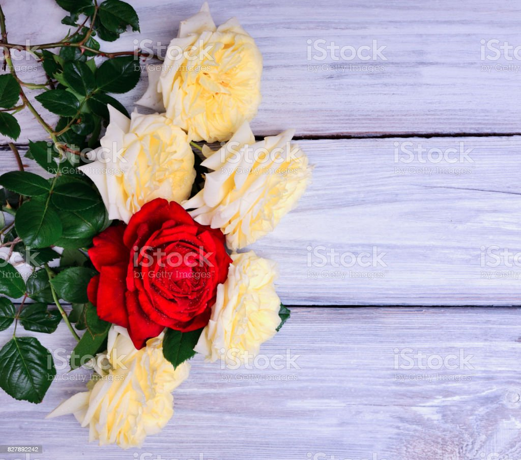 Bouquet Of Blooming Yellow And Red Roses Stock Photo More Pictures