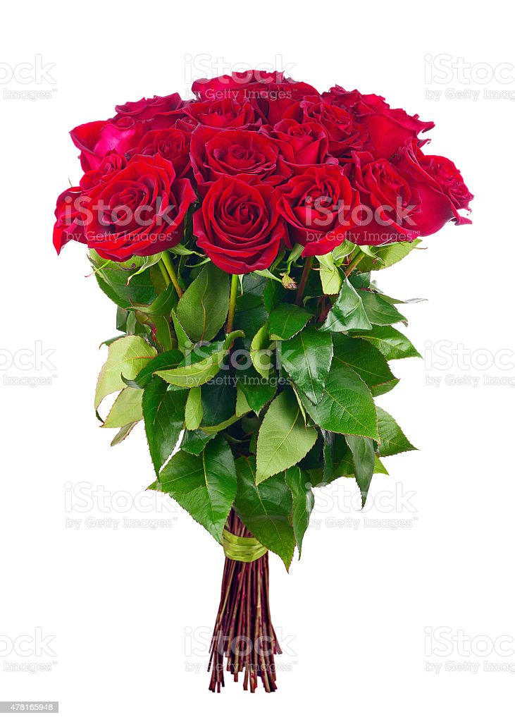 Bouquet of blossoming dark red roses. stock photo