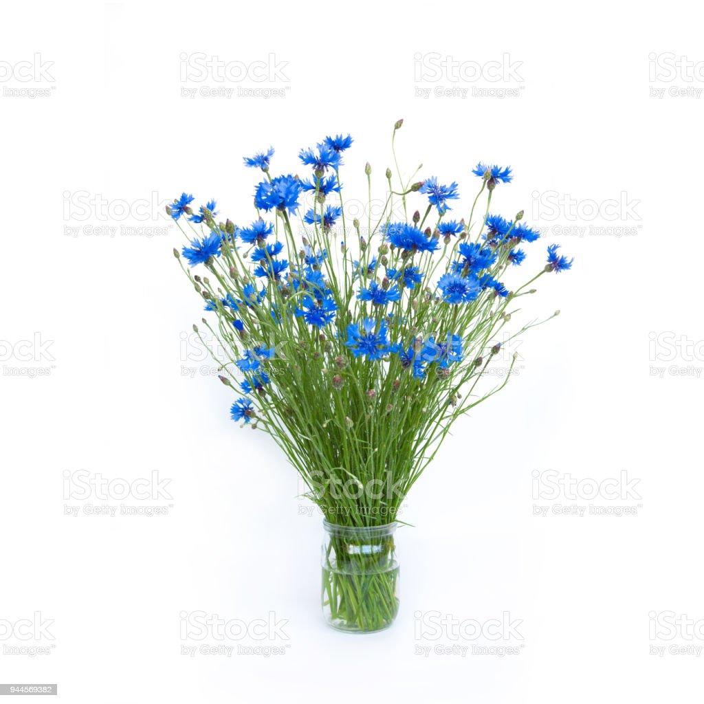 Bouquet of Blue Cornflowers on isolated white background stock photo